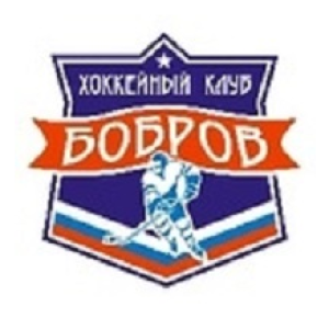 Бобров-04 (г.Бобров)