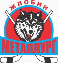 Металлург-08 (Жлобин)