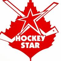 Hockey star-10