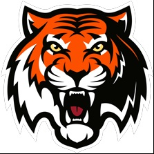 Moscow tigers-2-10